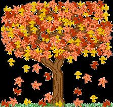 drzewo_gif8